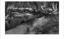 Barysz Marcin - River Wimple, 2014