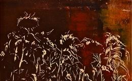 Chmielek Magdalena - Sunflowers (Tuscany), 2014