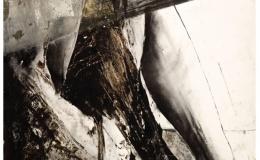 Sierżęga James - from Dispersio, 2013