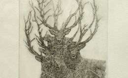 Pisialek Michal - Mix of forest and deer, 2013